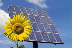 EQUO demanda la creación de más empleos relacionados con las energías renovables